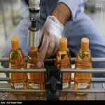 کارخانه فیروز یکی از خاص ترین کارخانه ها در ایران