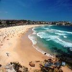 تصویری از عجیب ترین موجود دریایی در ساحل استرالیا