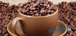 خطر انقراض گیاه قهوه