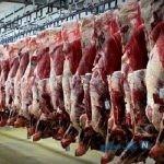پای مشهد در میان است/ بحران گوشت کشور در دست این ۵ شرکت