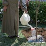 کاشت دو نهال میوه توسط رهبر انقلاب در روز درختکاری