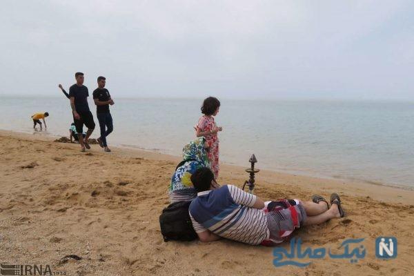 سواحل بوشهر