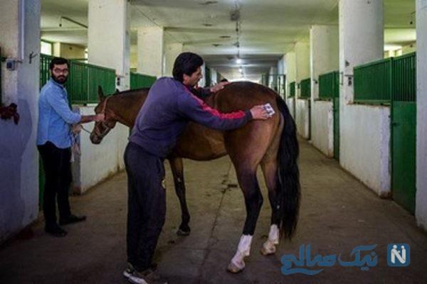 مراسم حراج اسب به نفع سیل زدگان کشور