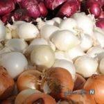 جزئیاتی از ممنوع شدن صادرات پیاز و سیب زمینی