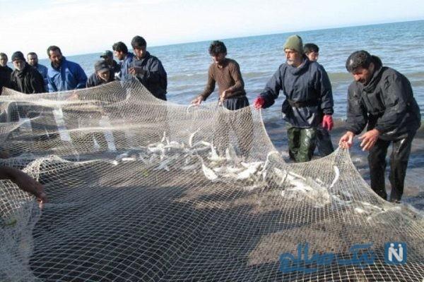 صید ماهی ۲۰ کیلویی | هدیه باران به صیاد جنوبی