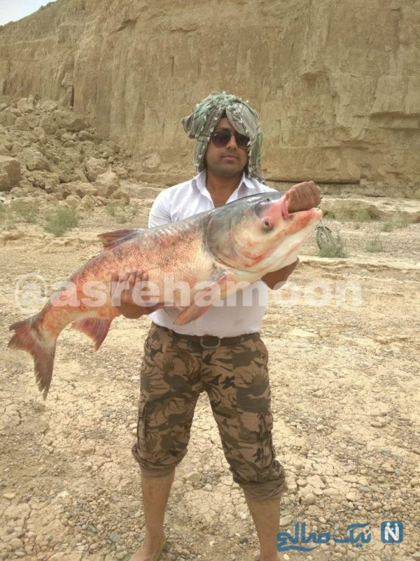 ماهی 20 کیلویی