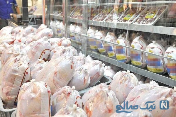 دستگیری عاملان گرانی گوشت مرغ در بازار