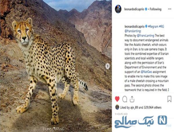 فعالان محیط زیست ایران