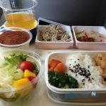 وعده غذایی فلافل در هواپیمای ایرانی سوژه شد!