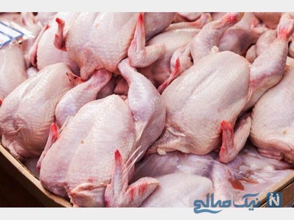 خونمردگی و لکههای سبزرنگ در بافت گوشت مرغ تنظیم بازاری