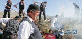 مراسم بیل گردانی در شهر تاریخی نیم ور