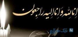 منیر شاهرودی فرمانفرمائیان نقاش معروف ایرانی درگذشت!