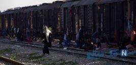 تصاویری غم انگیز از وضعیت سیل زدگان بامدژ