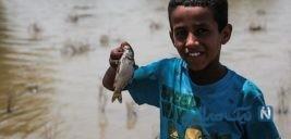 تلف شدن ماهی ها بعد از سیل خوزستان + تصاویر