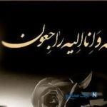 ابراهیم سلطانی فر کارگردان ایرانی درگذشت + جزئیات مراسم تشییع