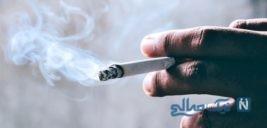 درگیری مرگبار به خاطر قیمت یک پاکت سیگار در تهران +عکس