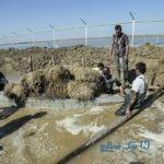 زندگی سخت مردم ترکمن صحرا ۴۰ روز بعد از سیل