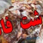 کشف گوشت فاسد از پارکینگ یک خانه در تهران+ فیلم