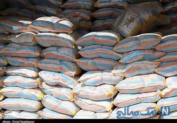 برنج دم سیاه ایرانی
