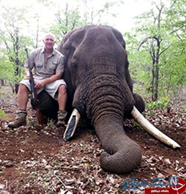 شکار حیوانات غول پیکر
