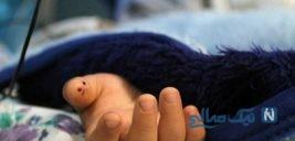 مرگ پسر ۶ ساله در مراسم عروسی دختر عمویش در تهران