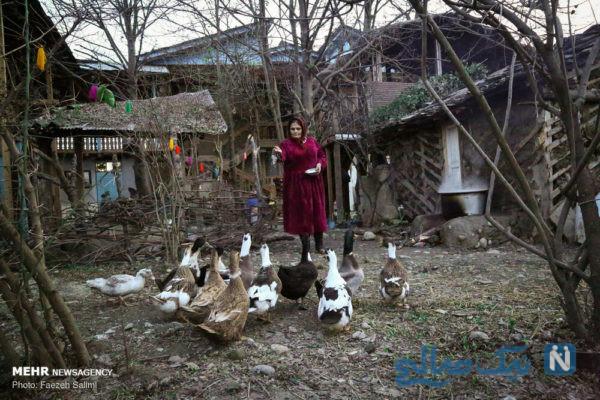 کارآفرینی در روستا