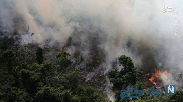 آتش سوزی در جنگل های ارسباران