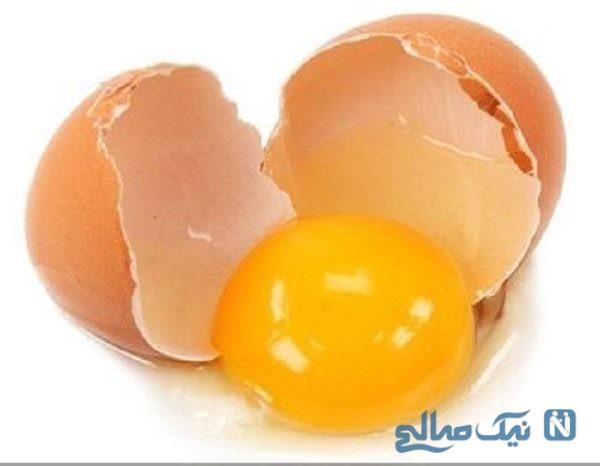 تخم مرغ پلاستیکی