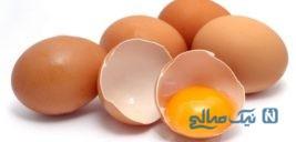 حمله اراذل و اوباش به دختر ۱۴ ساله با تخم مرغ