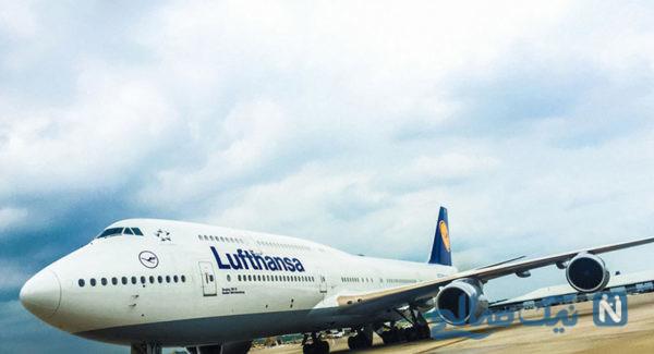 آوردن اسب در هواپیما و شوکه شدن مسافران در طول پرواز!