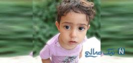زهرا ۲ ساله کودک گمشده تهرانی | ناگفته های پسرعمه او