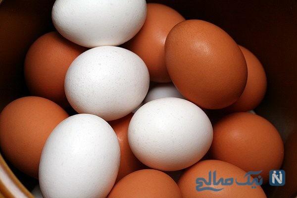 اطلاعات شگفت انگیز ازخواص تخم مرغ که از آن بی خبرید !