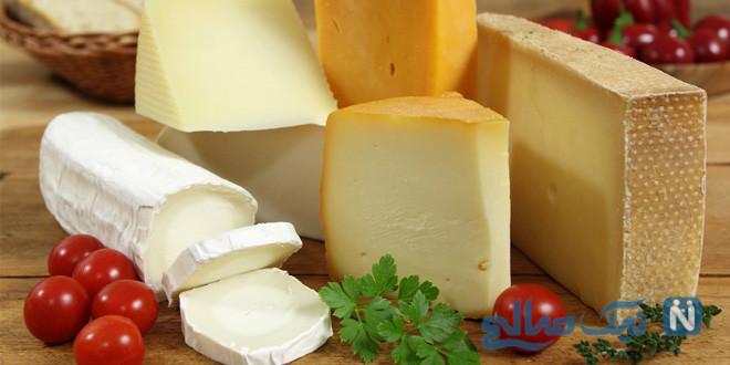 پنیرهای مختلف