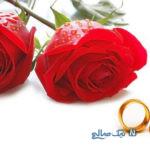 قابل توجه ادمین های کانال ازدواج موقت