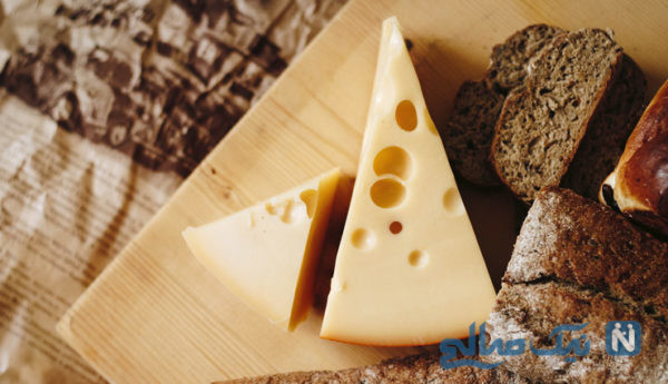 خطرناک ترین پنیر دنیا را بشناسید