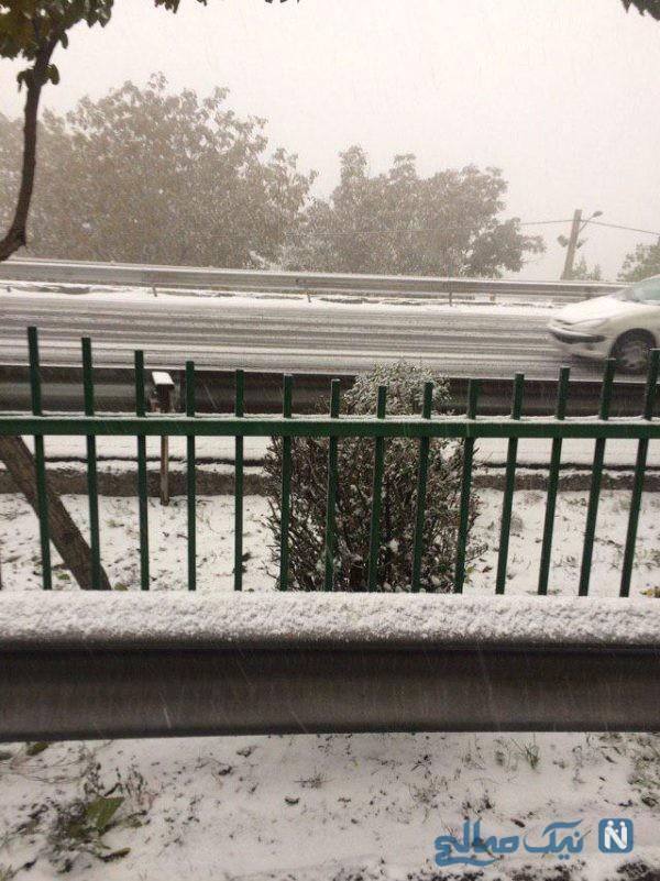 اولین برف پاییزی تهران