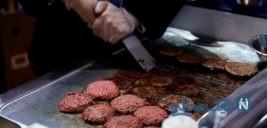 رسوایی گوشتهای آلوده در آلمان و مرگ ۲۵نفر