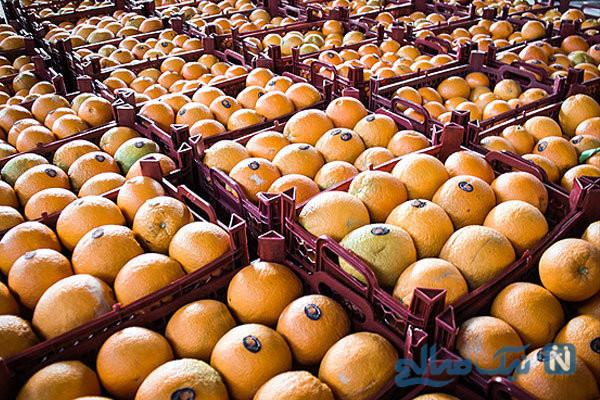 پرتقال رنگ شده