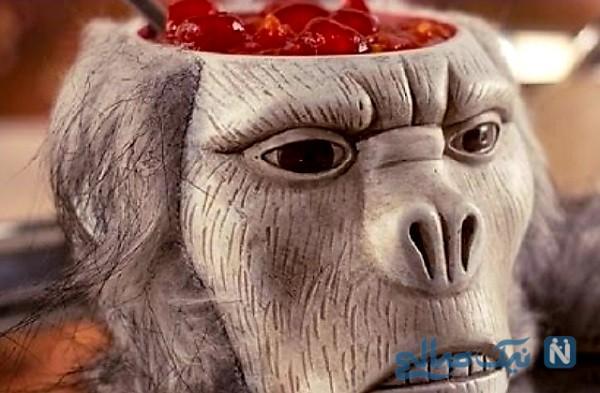 غذاهای عجیب شرق آسیا که با شکنجه حیوانات تهیه میشود!