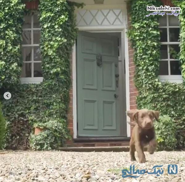 در ورودی خانه خانواده میدلتون
