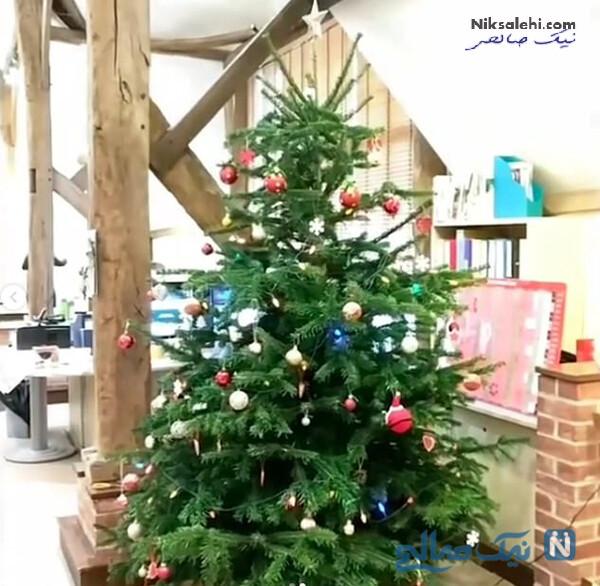 درخت کریسمس میدلتون ها