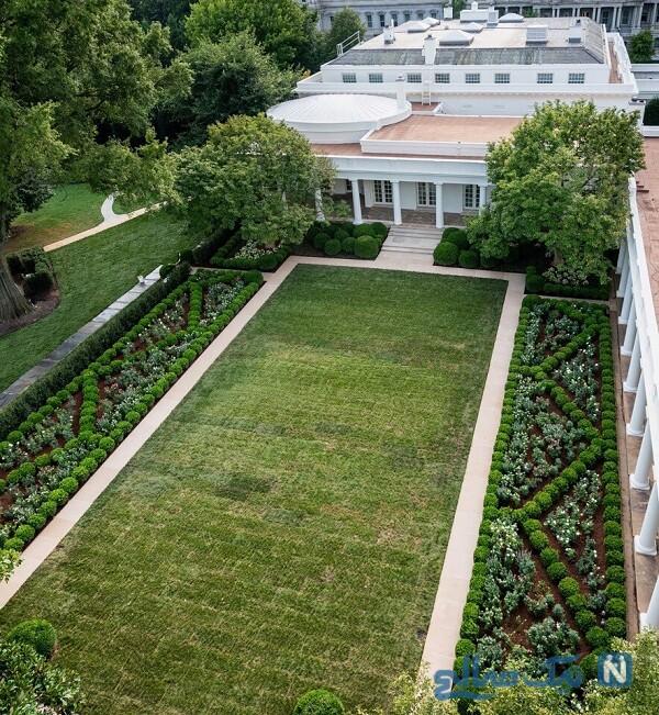 باغ گل رز کاخ سفید