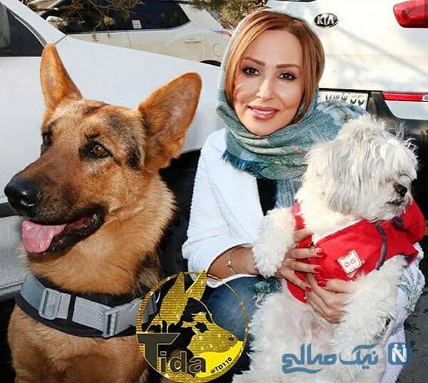 پرستو صالحی در کنار سگ هایش