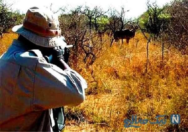 شکار حیوانات و آسیب به محیط زیست