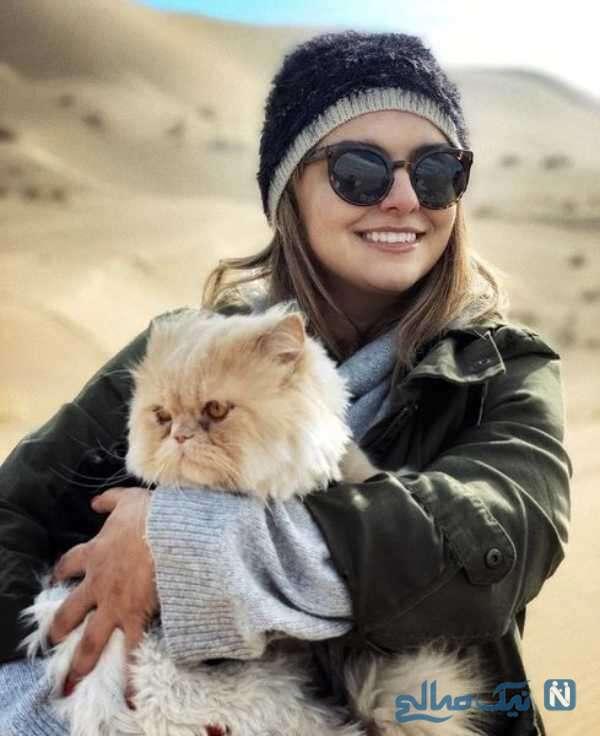 گربه پشمالو دنیا مدنی