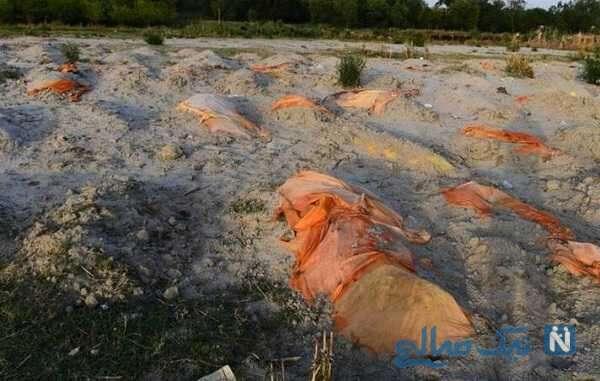 تصاویر عجیب بیرون آمدن اجساد کرونایی از قبر بر اثر بارندگی در هند