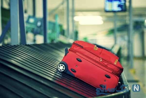 یک چمدان پر از عقرب , مار و رتیل از یک مسافر فرودگاه امام کشف شد