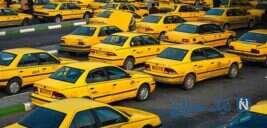 راننده تاکسی که در برنامه زنده به زبان انگلیسی و فرانسوی حرف میزنه