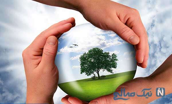 حفاظت محیط ریست