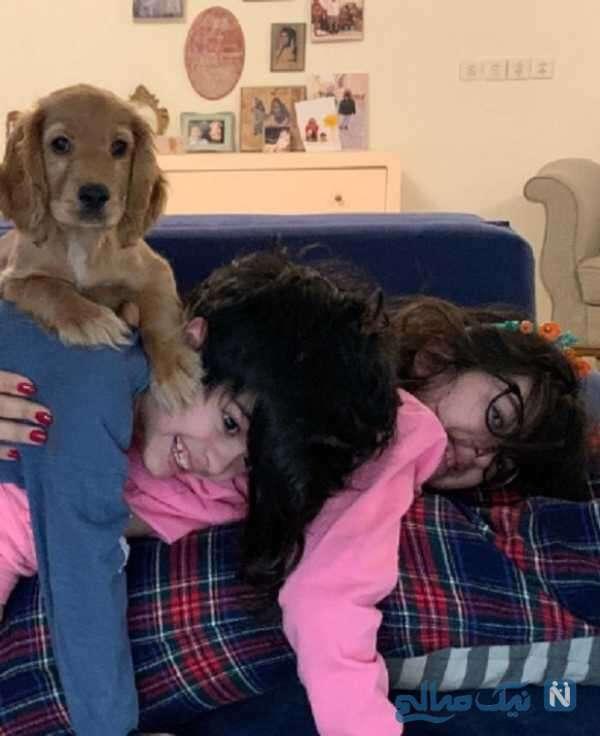 سگ مجید صالحی کنار فرزندانش